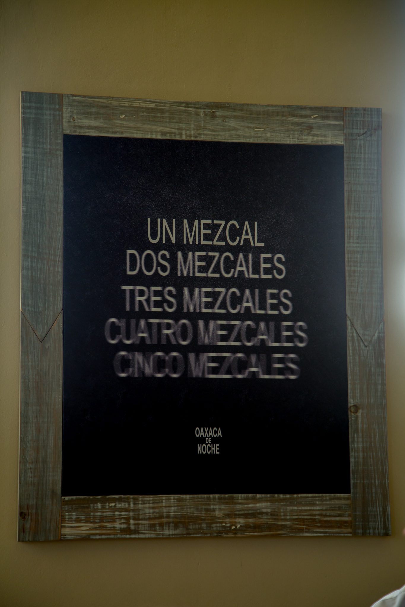 Learn to taste Mezcal like a Pro!